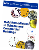 Click to download the mold remediation documentation.